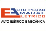 Banner Lateral Auto Elétrico Amaral